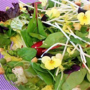 Catering Amstelveen salade